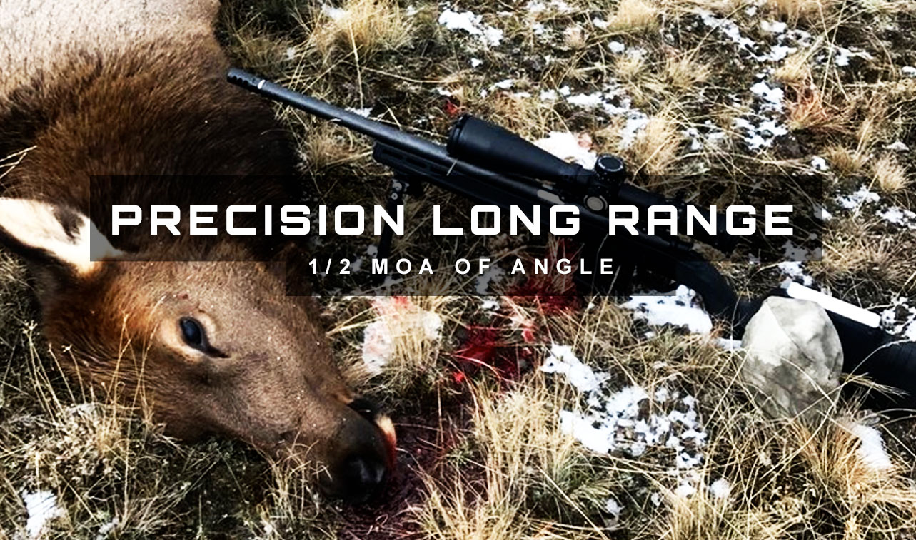 Long Range Precision Rifles